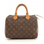 Louis Vuitton Speedy 25 Monogram Canvas City Hand Bag