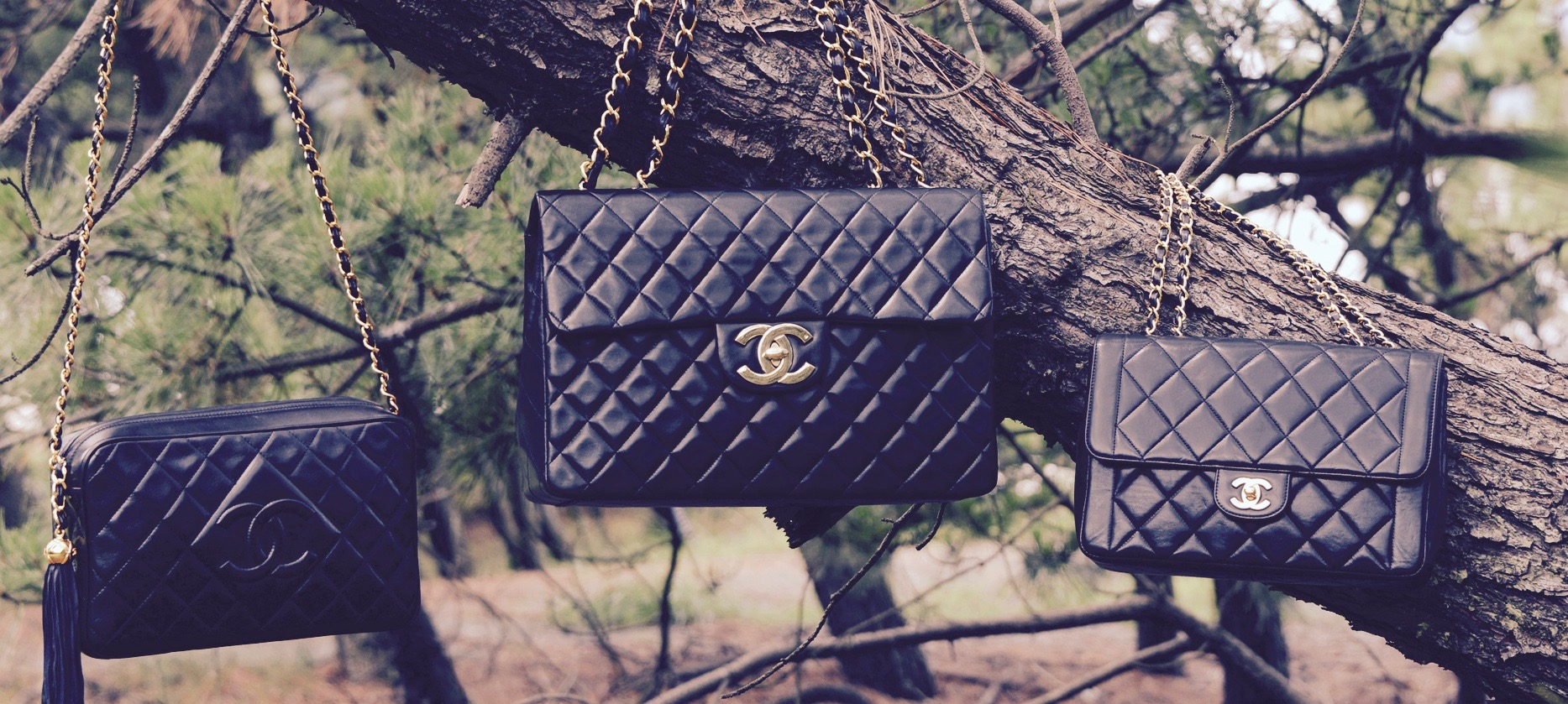 Chanel classic bags hanging on a tree